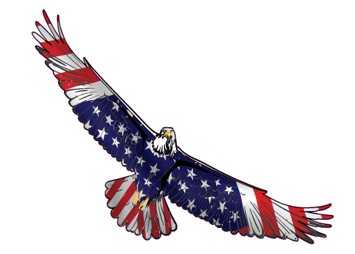 eagle soaring drawing